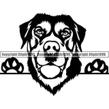 Swiss Mountain Peeking Dog Breed ClipArt SVG