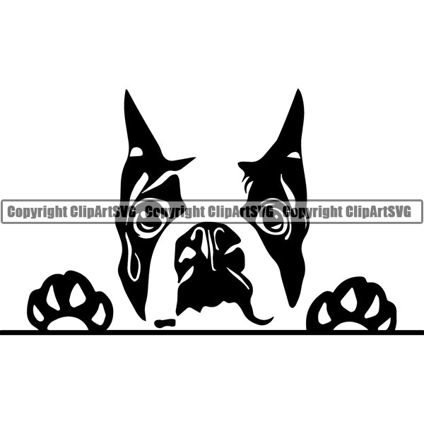Boston Terrier Peeking Dog Breed Clipart SVG 003