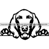 Weimaraner Peeking Dog Breed ClipArt SVG 003