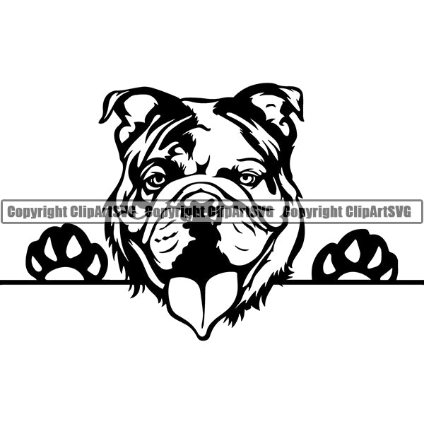 English Bulldog Peeking Dog Breed ClipArt SVG 007