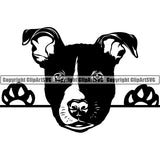 Pit Bull Peeking Dog Breed ClipArt SVG 022