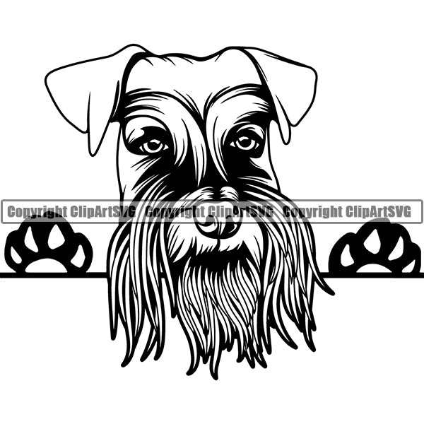Schnauzer Giant Peeking Dog Breed ClipArt SVG