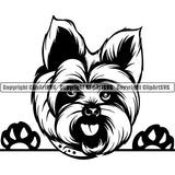Yorkshire Terrier Peeking Dog Breed ClipArt SVG 015