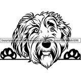 Labradoodle Peeking Dog Breed ClipArt SVG 004