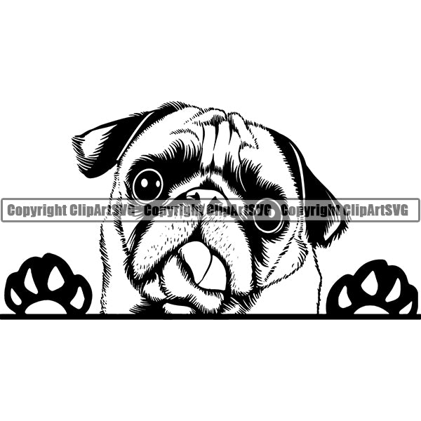Pug Peeking Dog Breed ClipArt SVG 001