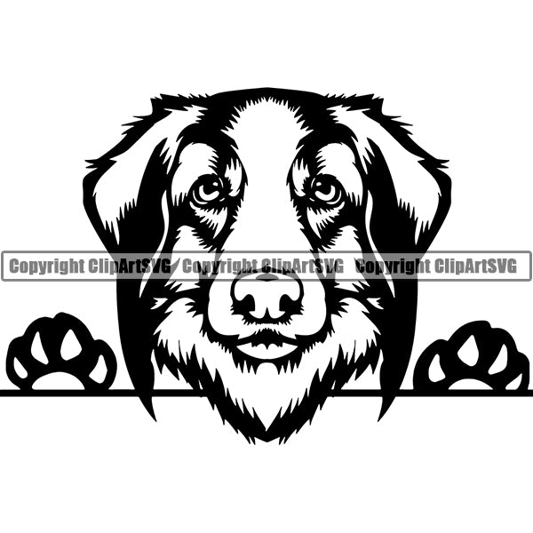 Leonberger Peeking Dog Breed ClipArt SVG 002