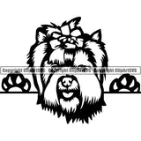 Yorkshire Terrier Peeking Dog Breed ClipArt SVG 003