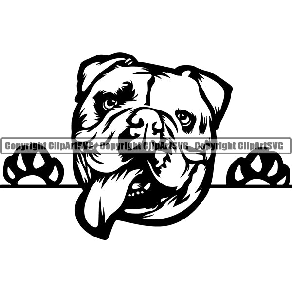 English Bulldog Peeking Dog Breed ClipArt SVG 003