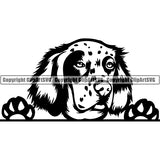 English Setter Peeking Dog Breed ClipArt SVG 001