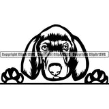 Weimaraner Peeking Dog Breed ClipArt SVG 002