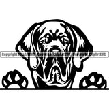 Great Dane Peeking Dog Breed ClipArt SVG 010