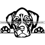 Boxer Peeking Dog Breed Clipart SVG 001