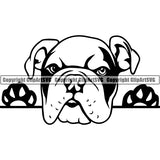English Bulldog Peeking Dog Breed ClipArt SVG 012