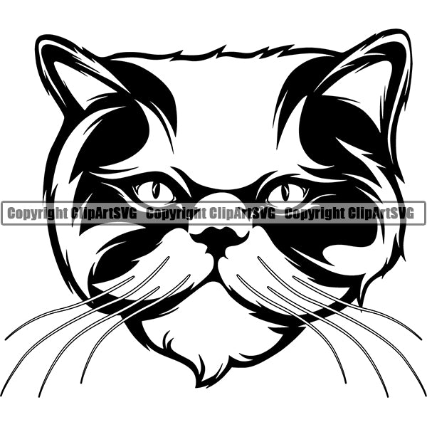 Persian Cat Head Face Clipart SVG 03