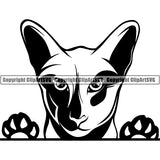 Oriental Cat Head Face Clipart SVG 01