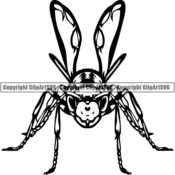 Wasp Bee Insect Pest Animal ClipArt SVG