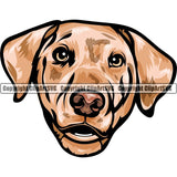 Australian Shepherd Dog Breed Head Color ClipArt SVG