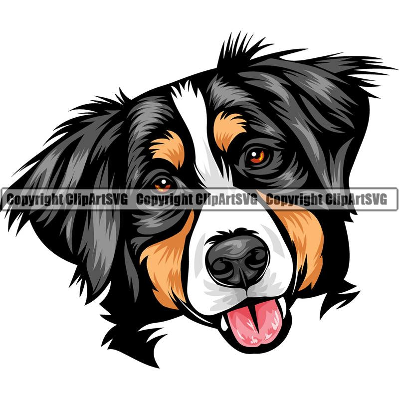 Bernese Mountain Dog Breed Head Color ClipArt SVG