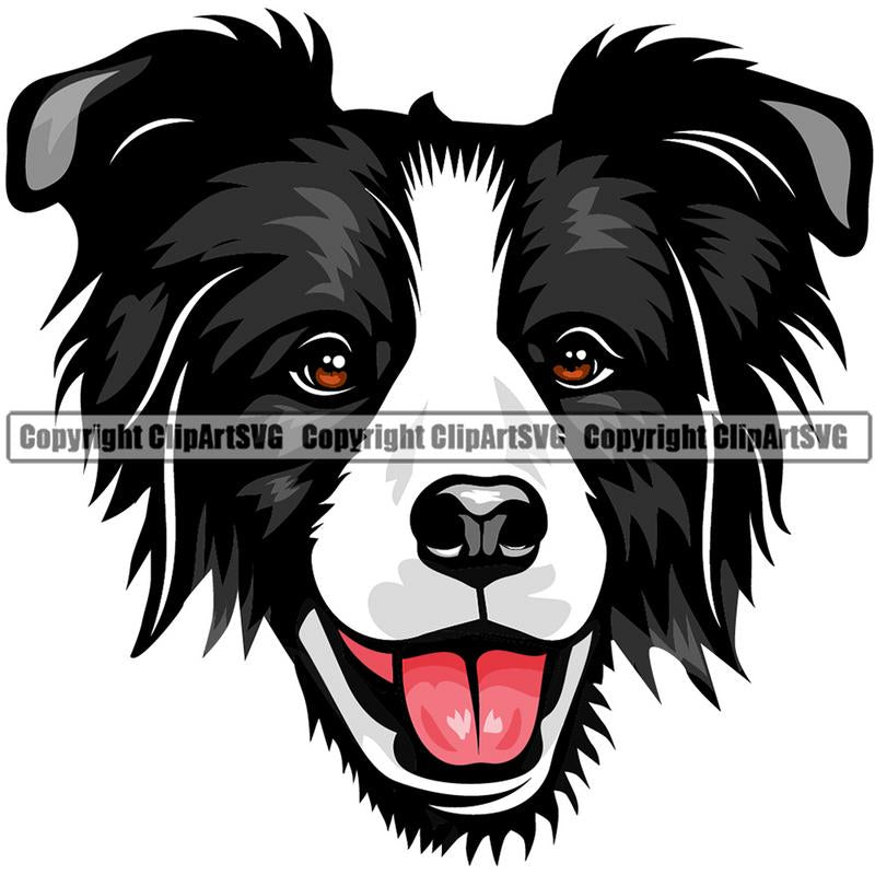 Border Collie Dog Breed Head Color ClipArt SVG