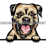 Border Terrier Dog Breed Peeking Color ClipArt SVG