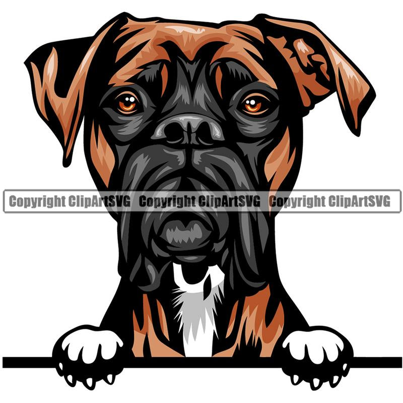 Boxer Dog Breed Peeking Color ClipArt SVG