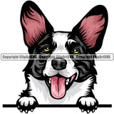 Cardigan Welsh Corgi Dog Breed Peeking Color ClipArt SVG