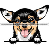 Chihuahua Dog Breed Peeking Color ClipArt SVG