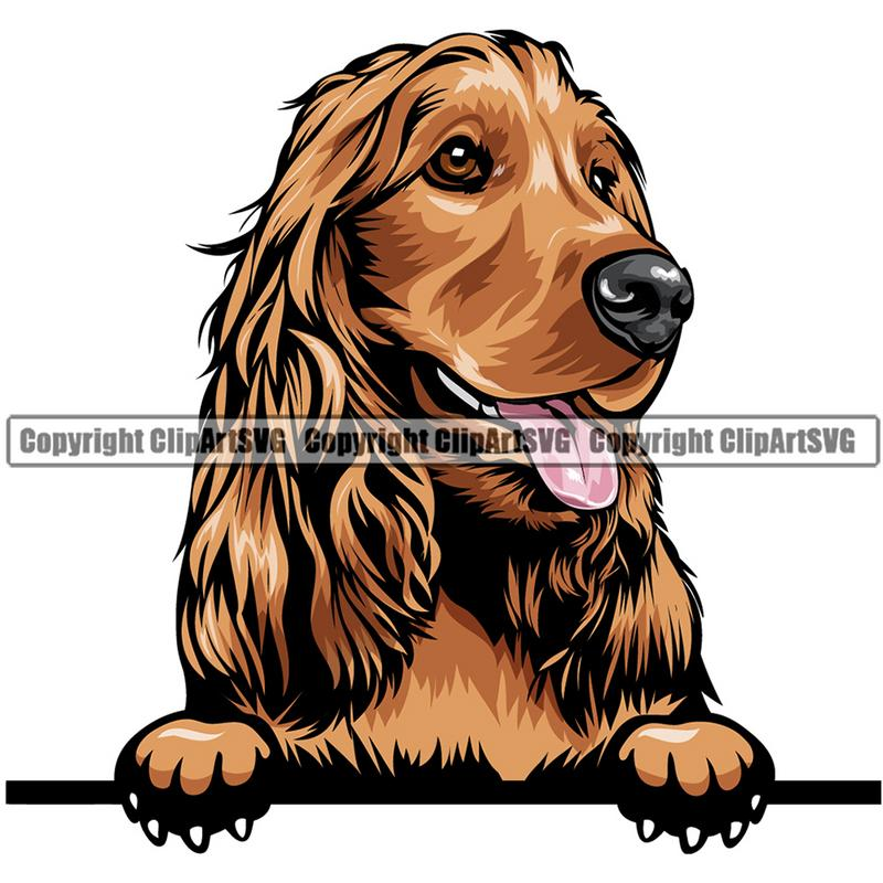 Cocker Spaniel Dog Breed Peeking Color ClipArt SVG