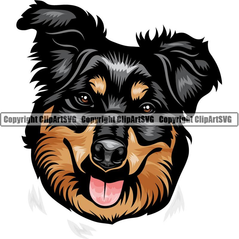 Collie Dog Breed Head Color ClipArt SVG