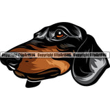 Dachshund Dog Breed Head Color ClipArt SVG