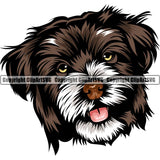 Havanese Dog Breed Head Color ClipArt SVG