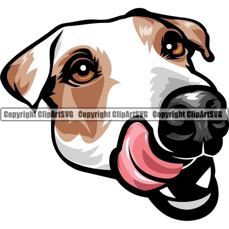 Jack Russell Terrier Dog Breed Head Color ClipArt SVG
