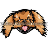 Pekingese Dog Breed Head Color ClipArt SVG