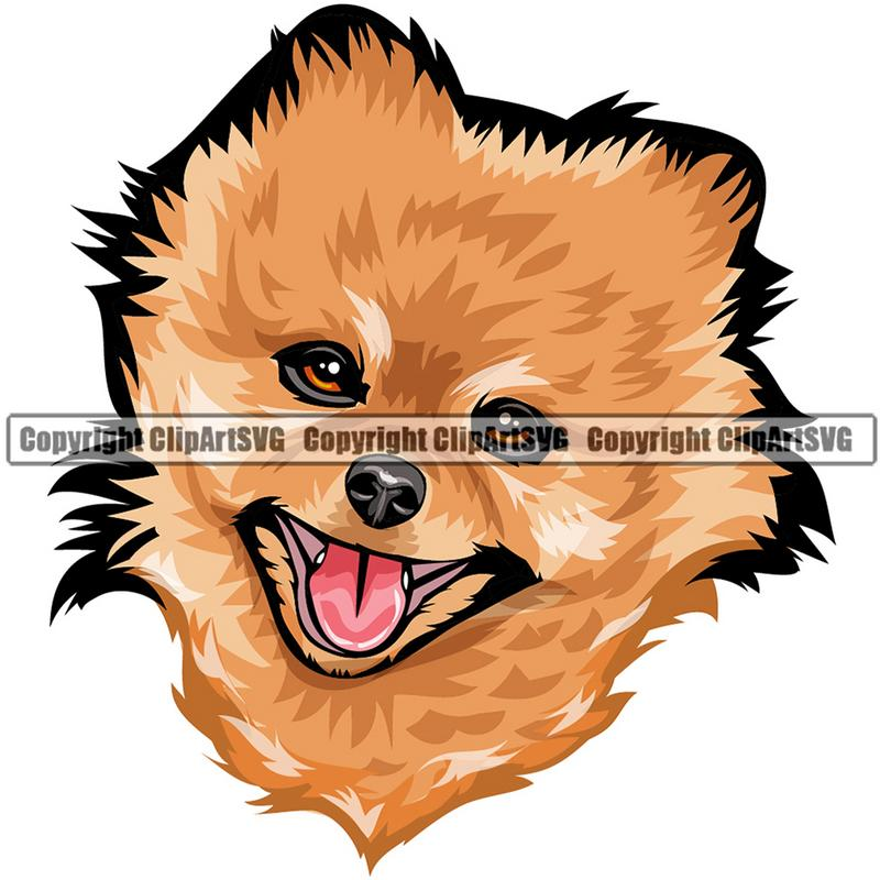 Pomeranian Dog Breed Head Color ClipArt SVG