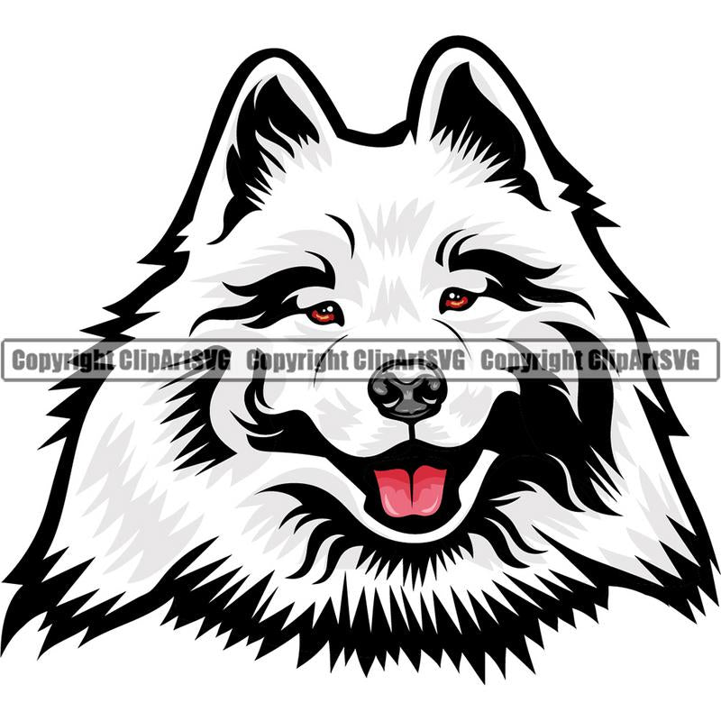 Samoyed Dog Breed Head Color ClipArt SVG