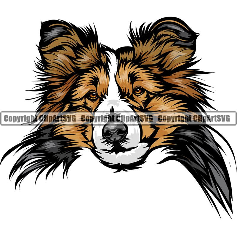 Shetland Sheepdog Dog Breed Head Color ClipArt SVG