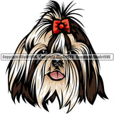 Shih Tzu Dog Breed Head Color ClipArt SVG
