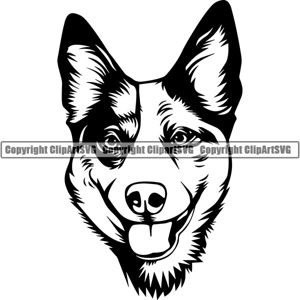 Australian Cattle Dog Breed Head Face ClipArt SVG