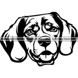 Beagle Dog Breed Head Face ClipArt SVG
