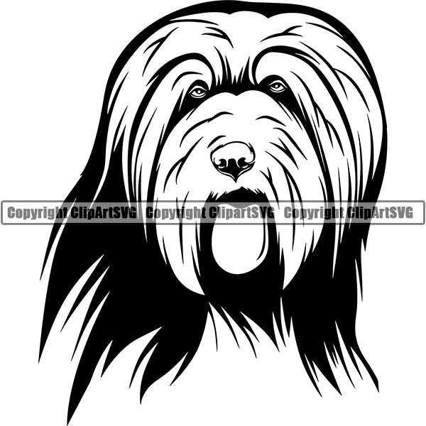 Bearded Collie Dog Breed Head Face ClipArt SVG