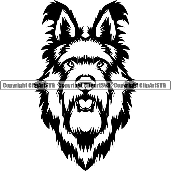Berger Picard Dog Breed Head Face ClipArt SVG