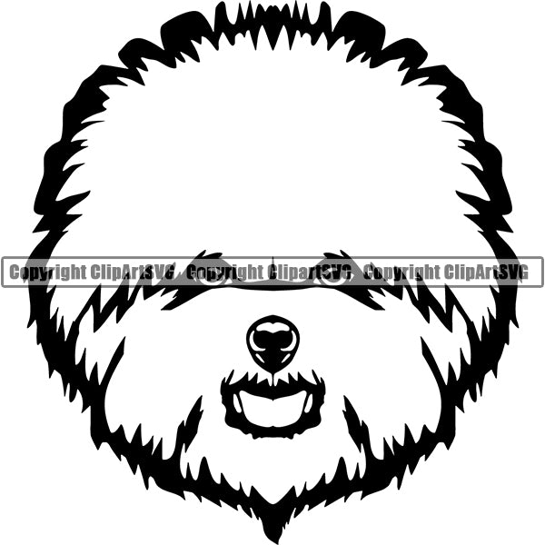 Bichon Frise Dog Breed Head Face ClipArt SVG