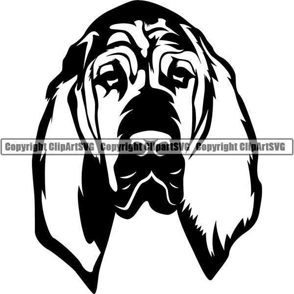 Bloodhound Dog Breed Head Face ClipArt SVG