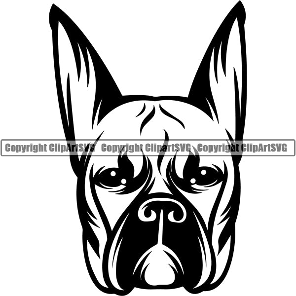 Boxer Dog Breed Head Face ClipArt SVG