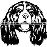 Cavalier King Charles Spaniel Dog Dog Breed Head Face ClipArt SVG