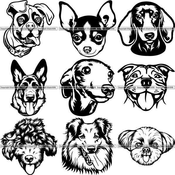 9 Dog Breed Top Selling Designs Cartoon Head Face Bundle Clipart Svg Clipart Svg
