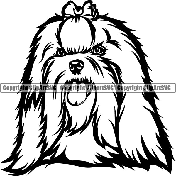 Maltese Dog Breed Head Face ClipArt SVG
