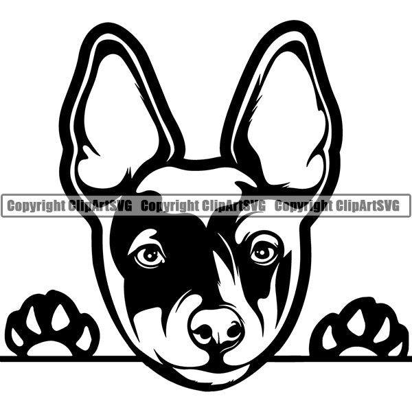 Rat Terrier Dog Breed ClipArt SVG