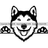 Siberian Husky Peeking Dog Breed ClipArt SVG