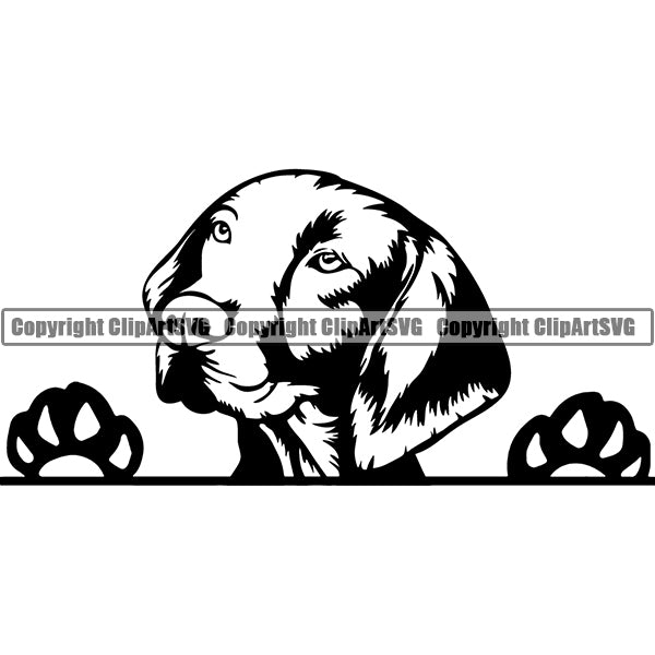 Vizsla Peeking Dog Breed ClipArt SVG